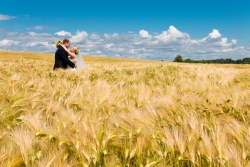 Wedding portrait of bride and groom in a field in summer